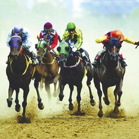 Bí kíp chơi đua ngựa luôn thắng tại FB88