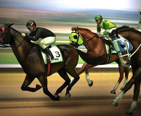 Hướng dẫn chơi cá cược đua ngựa tại M88